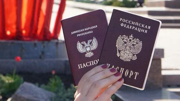Сенатор объяснил, почему паспорта РФ в ЛДНР выдают так медленно