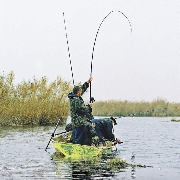 В зарослях Аграханского залива.