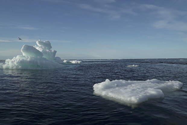 Нобелевский лауреат премии мира: Таяние льдов может привести к появлению новых и опасных для человека вирусов