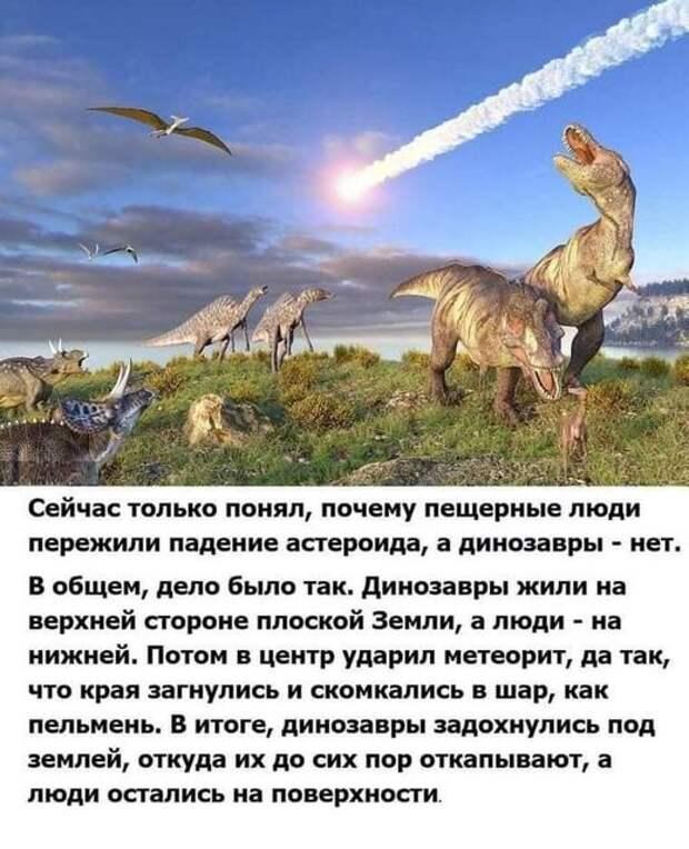 На изображении может находиться: текст «сейчас только понял, почему пещерные люди пережили падение астероида, a динозавры нет. в общем, дело было так. динозавры жили на верхней стороне плоской земли, a люди на нижней. потом в центр ударил метеорит, да так, что края загнулись и скомкались в шар, как пельмень. в итоге, динозавры задохнулись под землей, откуда их до сих пор откапывают, a люди остались на поверхности.»