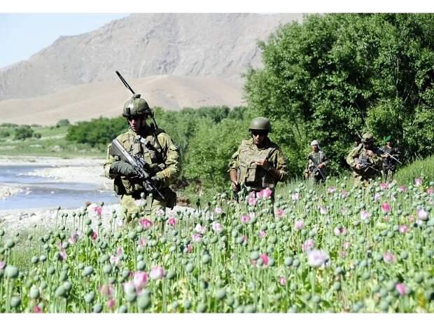 Опять Афганистан: «галантный Феникс» и трубка мира с опием