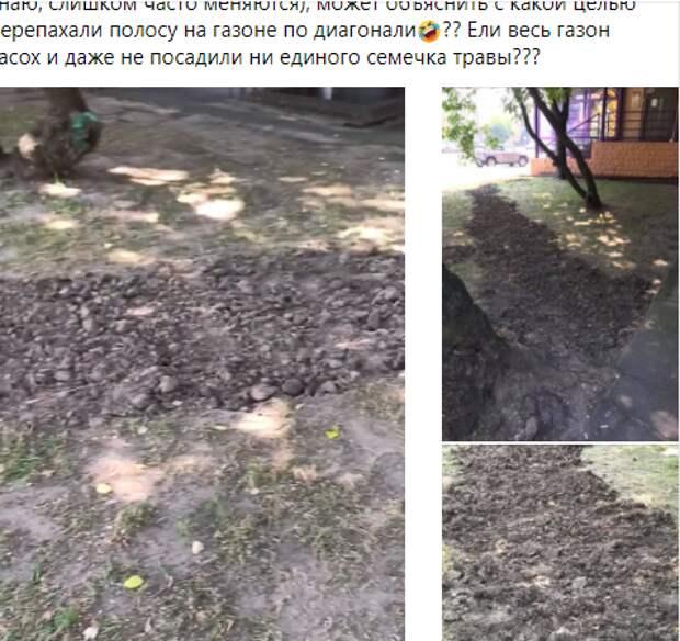 Новый газон появится возле дома на Бутырской улице – Префектура САО