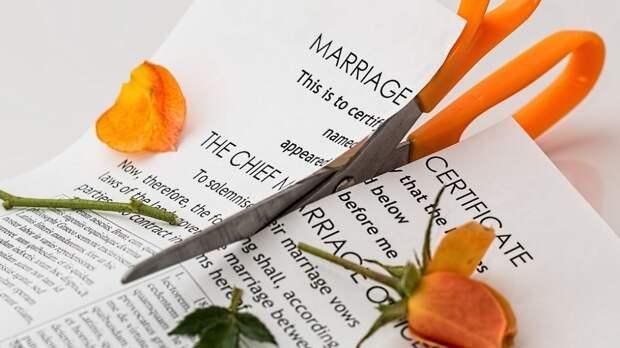 Адвокат объяснила возросшее число разводов в России