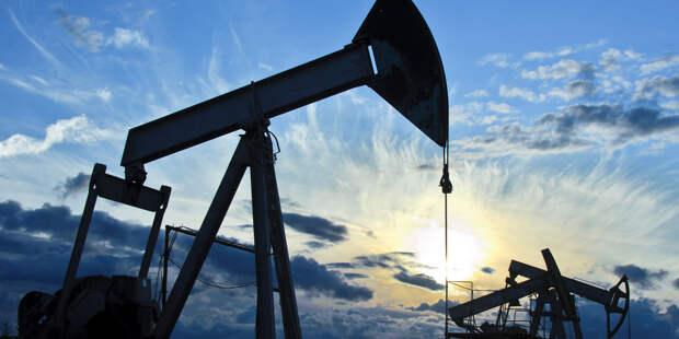 ФАС рассказала о разговоре с Белоруссией по транзиту нефти