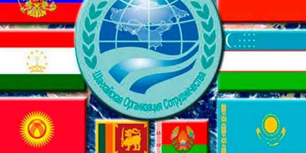 Основные итоги саммита ШОС в Таджикистане: Душанбинская декларация и принятие в организацию Ирана