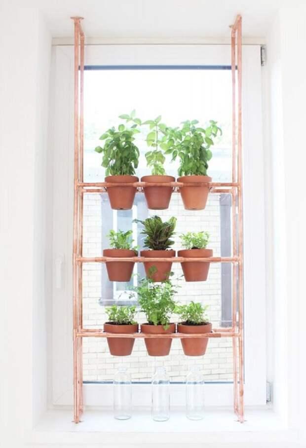 этажерки для домашних цветов