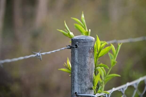 Прохожие в Удмуртии задержали злодеев, воровавших металл с предприятия