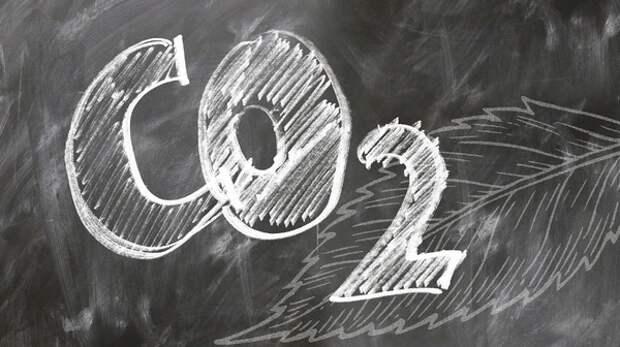 Ученые выяснили, что высокие уровни CO2 ухудшают работу мозга детей