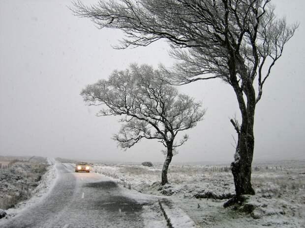 Усиление ветра ожидается в Удмуртии в четверг и пятницу