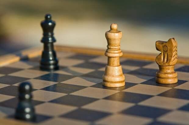 Жителей Краснодара приглашают на шахматный турнир