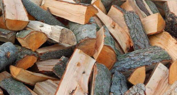 Как выбрать лучшие дрова в мире