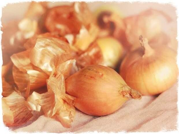 Народные рецепты лечения луковой шелухой