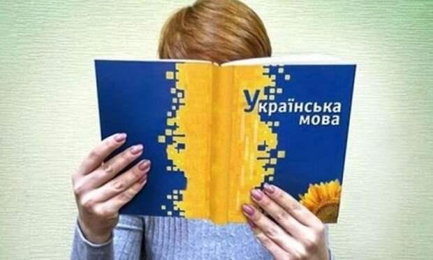 Спикер Рады вочередной раз допустил ревизию «языкового закона» наУкраине