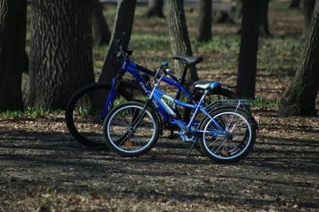 Россияне стали чаще интересоваться покупкой велосипедов