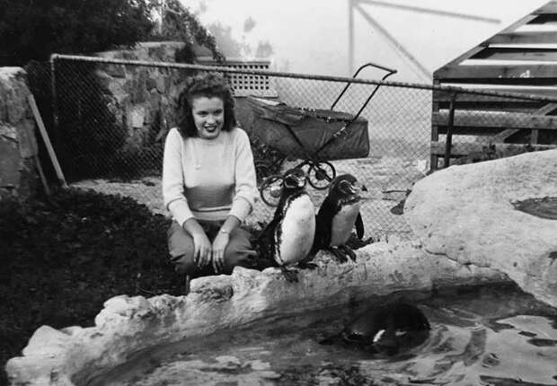 20 редких снимков Мэрилин Монро дотого, как она стала известной