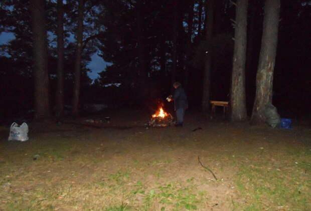 А время близилось к полуночи..  будь Человеком, лес, природа