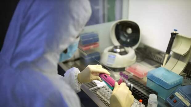 В Петербурге за минувшие сутки провели более 11 тысяч тестов на коронавирус