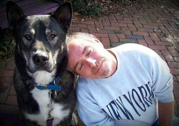 """18. """"Нет любви вернее, чем любовь сварливого папы к собаке, которую он не хотел заводить. Теперь моя собака каждое утро будит папу, и они идут в собачий парк. Правило - папа должен подождать, пока питомица не пообщается с каждым из своих друзей"""" животные, забавно, забавные животные, истории, питомцы, подборка, собаки, хозяева"""