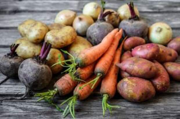 Как быстро сварить овощи для всех салатов на Новый год. Секреты шеф-повара
