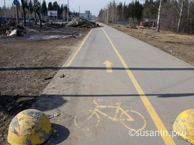 В Ижевске появится 8 новых велодорожек