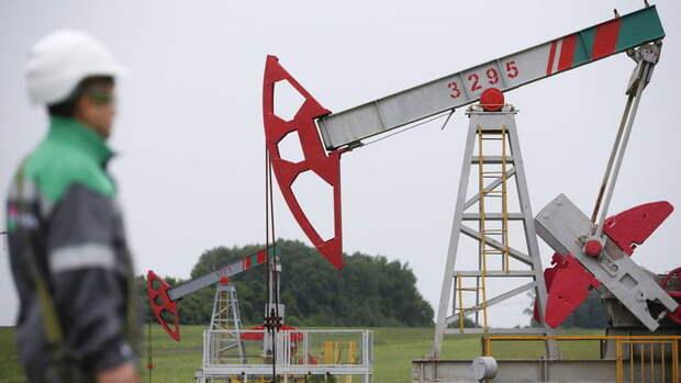 На50% надеется «Татнефть» увеличить добычу нефти, носльготами