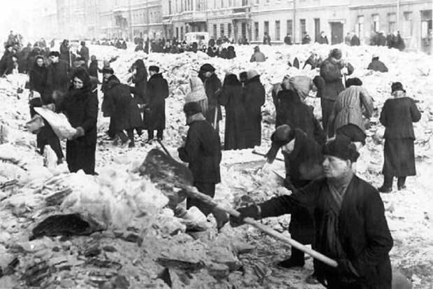 Как ленинградцы не допустили эпидемий, выиграв еще одно масштабное сражение