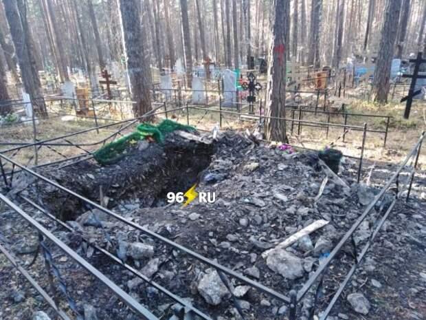 Медведь разрыл могилу и съел покойника в Нижнем Тагиле