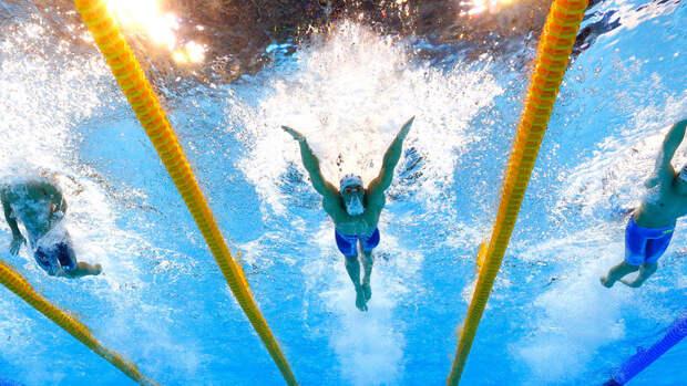 Российские пловцы завоевали золото ЧЕ в эстафете 4х100 вольным стилем