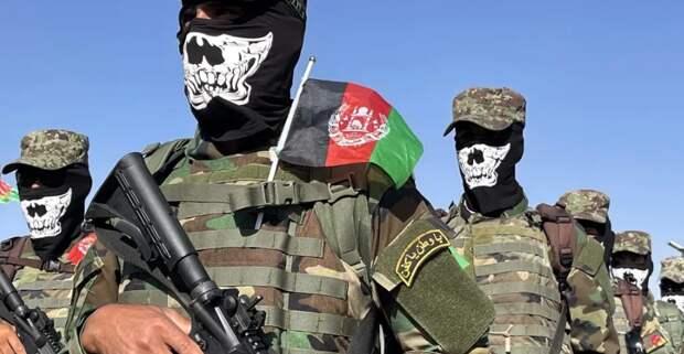 Параллели Афгана с Украиной - есть или нет?