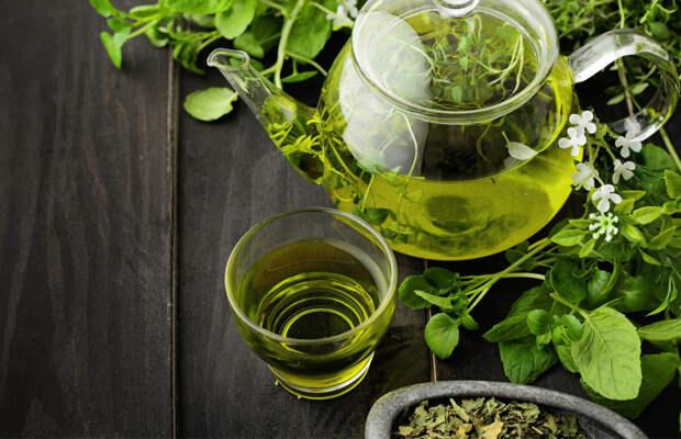 В зелёном чае обнаружили вещество, которое может помочь в борьбе против коронавируса