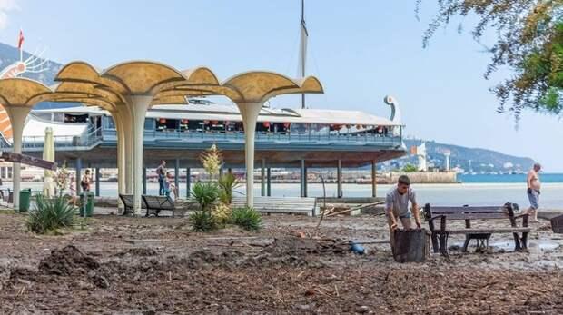 Пляжи Ялты приведут в порядок в течение нескольких дней - власти