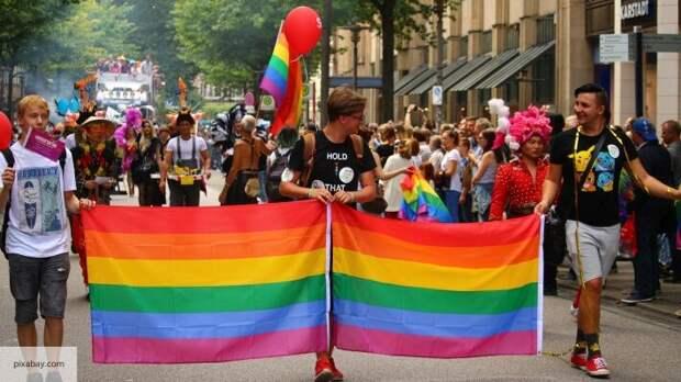 ЛГБТ-воспитание в школах Польши: Милонов пояснил, как полякам навязывают западные ценности