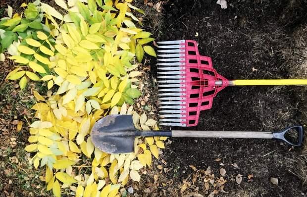 Нужно ли перекапывать грядки осенью?