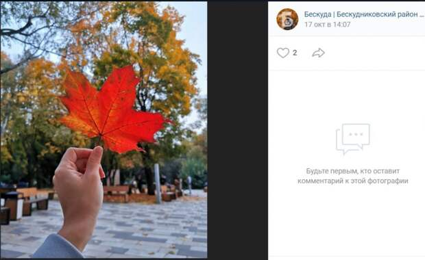 Фото дня: пятиконечный символ осени парка Фёдорова