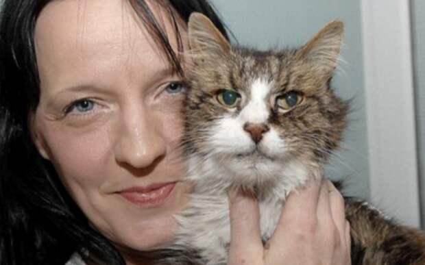 Британке вернули пропавшего 14 лет назад кота