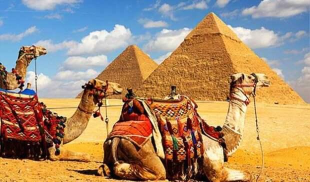 Египет готовится возобновить чартерные рейсы накурорты