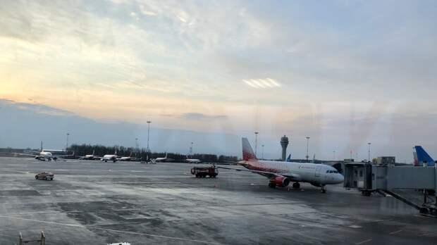 Транспортная полиция заинтересовалась потасовкой с участием поэтессы в калининградском аэропорту