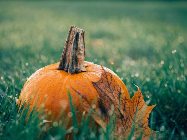 Метеорологи Удмуртии назвали самый теплый и самый холодный день октября
