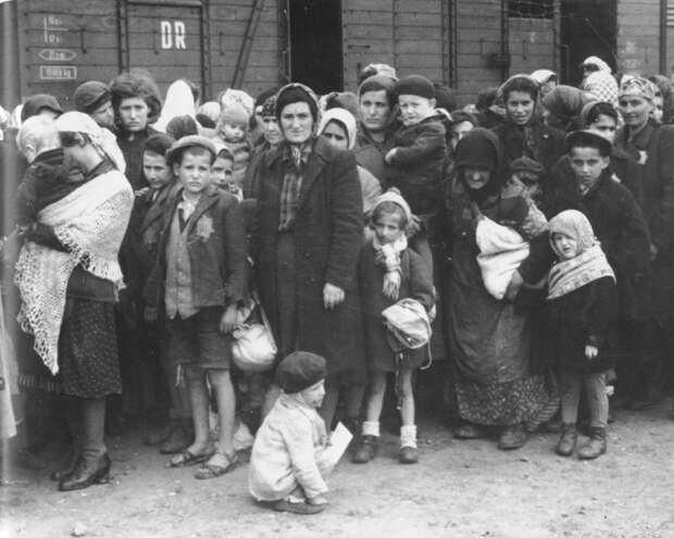 Венгерские евреи у поезда после прибытия в концлагерь Освенцим.
