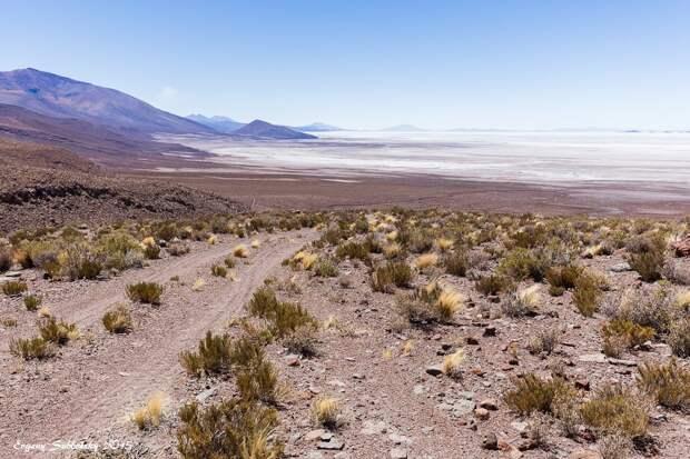 40 дней в горах Боливии и Перу: 6. Саляр (солончак) де Уюни.