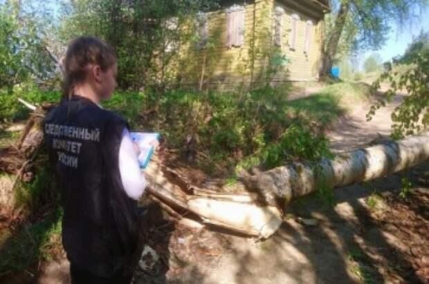 В Костромской области подросток погиб после падения на него дерева