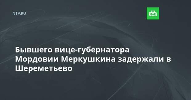 Бывшего вице-губернатора Мордовии Меркушкина задержали в Шереметьево