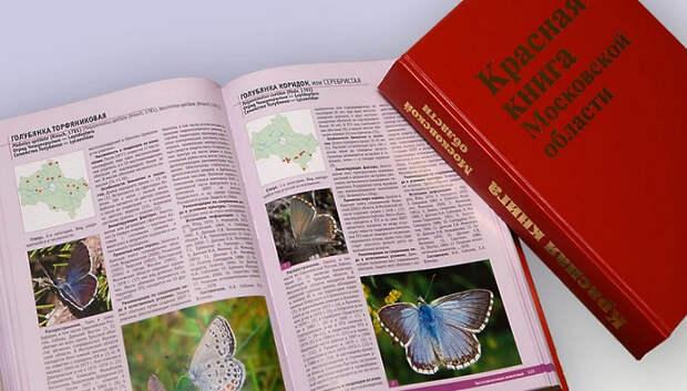 В Подмосковье под охраной остаются девять видов фауны, исключенных из Красной книги РФ