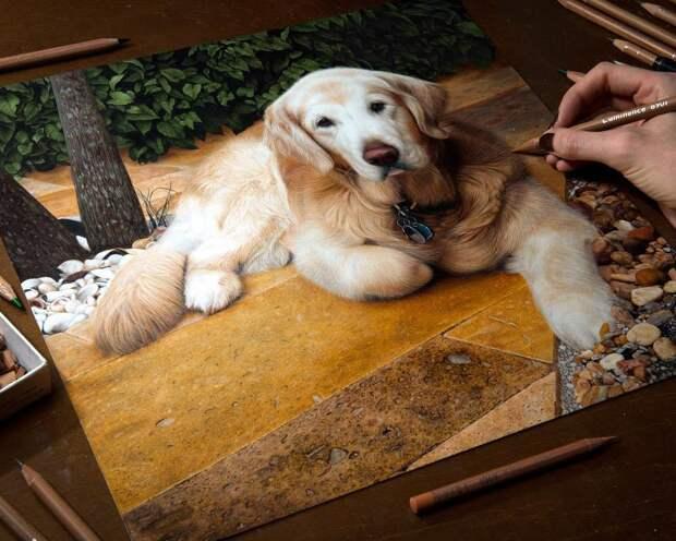 Это не фото, это рисунки художницы, созданные лишь графитом и карандашом