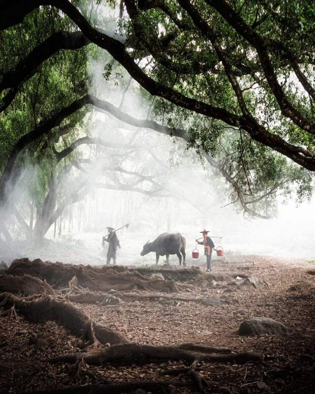 Прелестные снимки из путешествий Йонаса Хорнехея