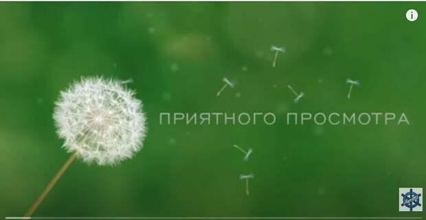 Весомое чувство русские мелодрамы