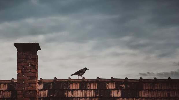 В Свиблове дети с помощью матов пытались прорваться на крышу дома