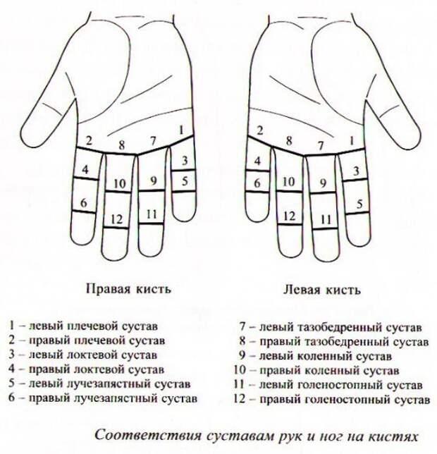 Су-Джок - терапия для суставов