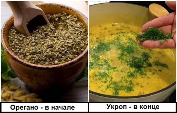 От вида зелени зависит этап, когда ее нужно класть в блюдо