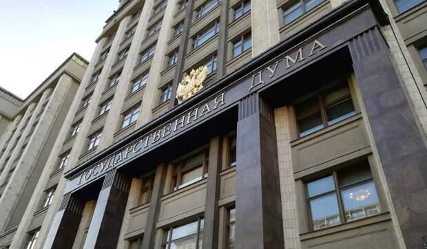 Дума предложит Бундестагу совместно контролировать ситуацию вокруг Навального